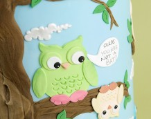 'Owl Wedding Cake' (Ollie!)